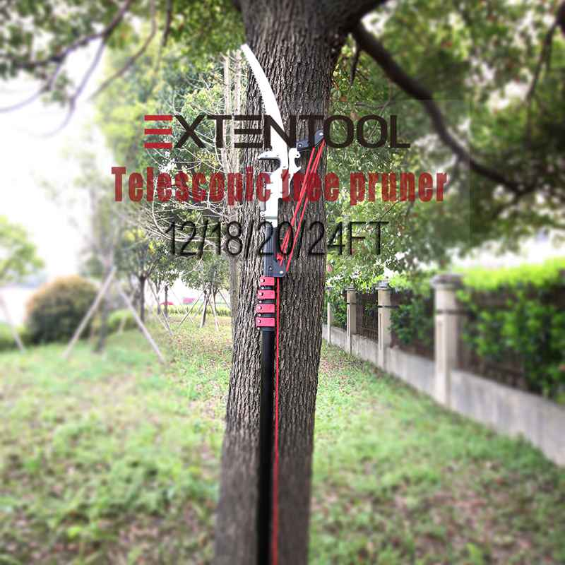 China Telescopic tree pruner with saw
