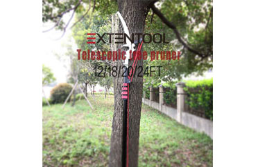 How to Choose the Right Pruning Tool for Your Garden Jobs